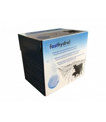 FASTHYDRAL 42 tabl/fpk